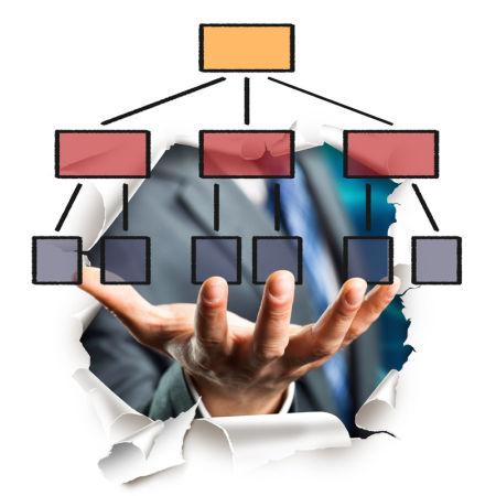 Hand prsentiert Organigramm
